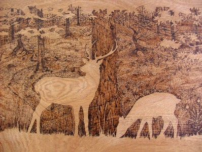 PYROGRAPHY: Impressive Portraits Of Nature Realized By The Careful Burning Of Wood -3