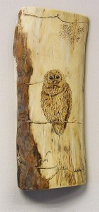 PYROGRAPHY: Impressive Portraits Of Nature Realized By The Careful Burning Of Wood -6