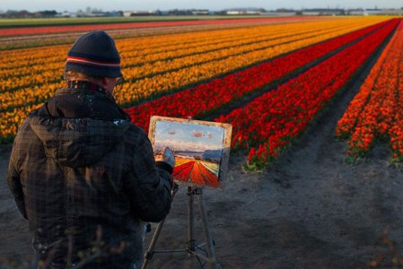 Celebrate The Arrival Of Spring With 15 Beautiful Flower Field Photos-11
