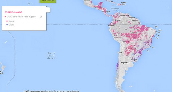 This Interactive World Map Reveals The Massive Deforestation Of Earth In Real Time-1