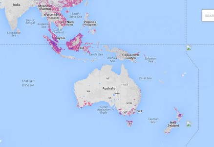 This Interactive World Map Reveals The Massive Deforestation Of Earth In Real Time-9