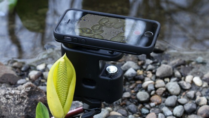 MicrobeScope Turns Your iPhone Into A Microscope-1