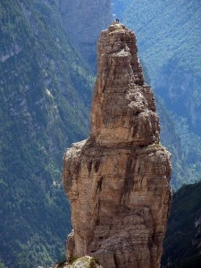 Top 12 Mountain Goats In A Miserable Position While Climbing A Cliff-2