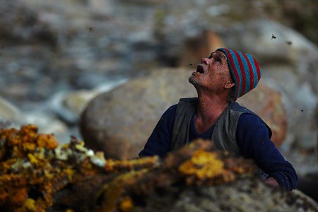 Nepalese Honey Hunter Risk Their Lives On High Cliffs To Feed Their Families -1