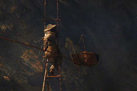 Nepalese Honey Hunter Risk Their Lives On High Cliffs To Feed Their Families -4