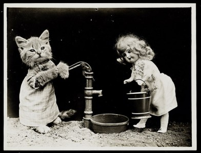 Old Is Gold-Amazing Cat Fashion From 1915 -9