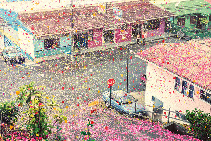 Amazing Spectacle 8000000 Flower Petals Falling On A Small Village-4