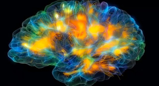 An Awesome 3D Modeling Reveals The Activity Of Human Brain-1