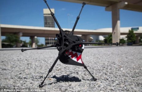 Biologically Inspired Robot