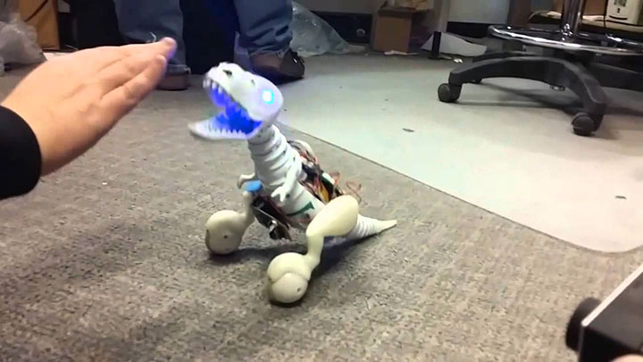 Boomer: A cute Dinosaur That Follows And Obeys Orders-