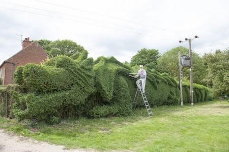 An English Gardener Grows A Giant Dragon In His Garden-3