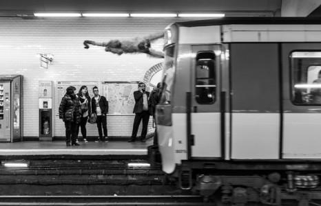 Animals Of Savannah In Paris Metro-11