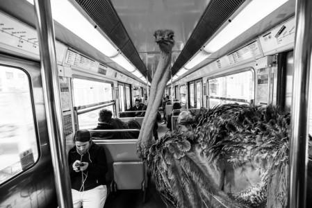 Animals Of Savannah In Paris Metro-2