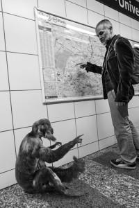 Animals Of Savannah In Paris Metro-6