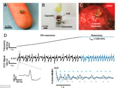 Wirelessly charging Heart pacemaker