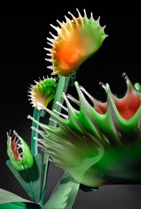 Gigantic And Realistic Flower Sculptures Made From Glass -5