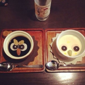 An Unusual Owl Bar Where You can Drink Coffee While Cuddling Owls-4