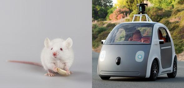 10 Things The New Google Driverless Car May Look Like-3