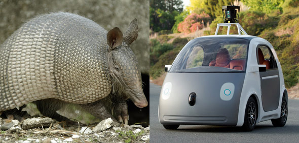 10 Things The New Google Driverless Car May Look Like-8