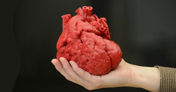 A Giant Step For Artificial Organs: Blood Vessels Synthesized By 3D Printing-