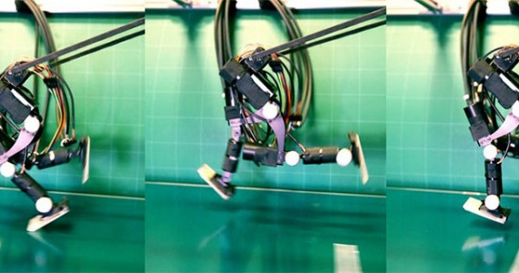Japanese Scientists Make A Semi-humanoid Robot That Runs Like A Man-