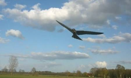 Robirds: The Robotic Raptors To Help Farmers By Scaring Off Pest Birds-