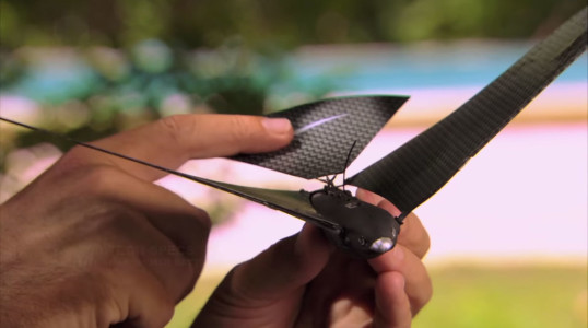 Amazing iPhone Controlled Bionic Bird Flies By Beating Its Wings-1