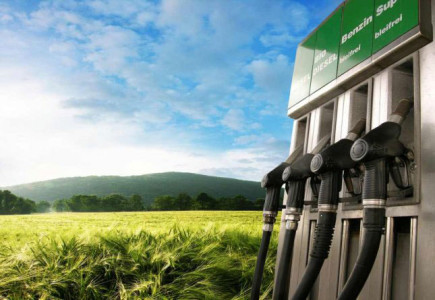 A Revolutionary Way To Produce Biofuel Directly From Grass!!!-