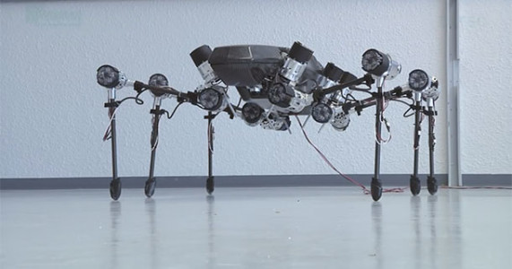 Hector: This Bio Inspired Hexapod Moves Swiftly Like A Real Insect-2