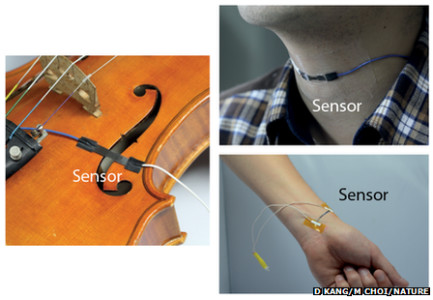 Inspired From Spider Legs Scientists Develop A High Precision Sound Sensor-1