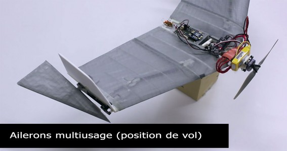DALER-A bat inspired robot that can fly and move on the ground-10