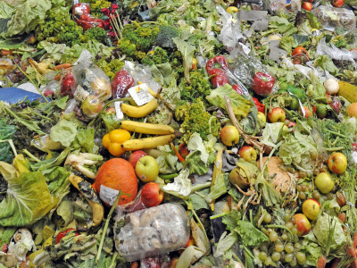 Fuels Of Tomorrow Will Be Produced From Your Own Food Waste-4