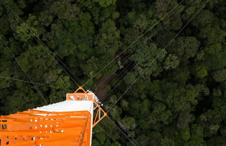 Discover This Gigantic Meteorological Tower Erected In Amazon Rainforest-10