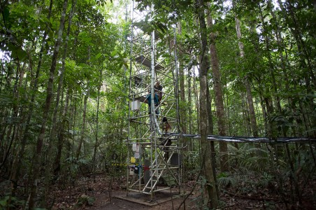 Discover This Gigantic Meteorological Tower Erected In Amazon Rainforest-2