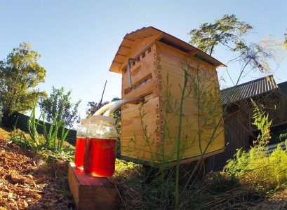 This Revolutionary Hive Enables Safe Honey Harvesting Without traumatizing Bees-4