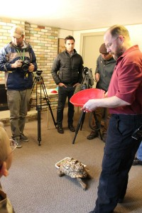 3D Printing Gives A New Life To Turtle Cleopatra-5