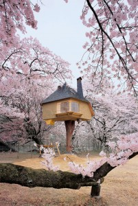 16 Mystical But Real Houses Where You'd Love To Live-21