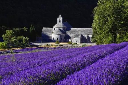 Abbey-de-Sénanque-Provence-Beautiful-France