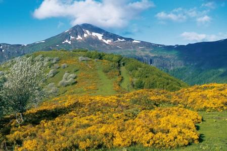 Cantal-Auvergne-Beautiful-France
