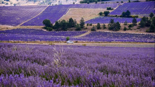 Provence-Provence-Alpes-Côte-d-Azur-Region-Beautiful-France