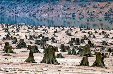 Top 17 Photographs Showing Alarming Devastation Of Earth-