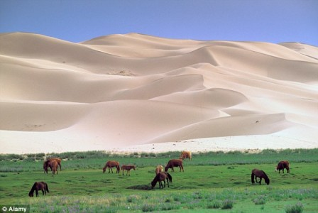 Google Street View Makes Us Travel To Remote Locations Of Mongolia-1