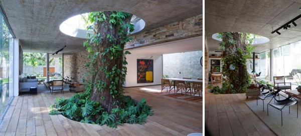 12 Green Tree Houses Built Around The Trees Without Cutting Them-1