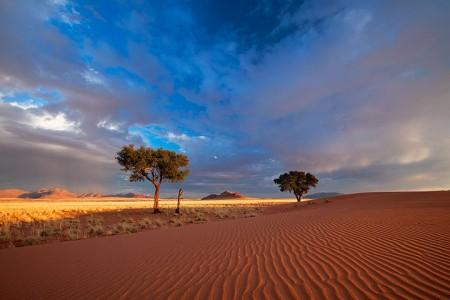 Most Beautiful Photographs To Reveal The Beautiful Namibian Desert-11