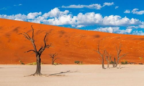 Most Beautiful Photographs To Reveal The Beautiful Namibian Desert-16