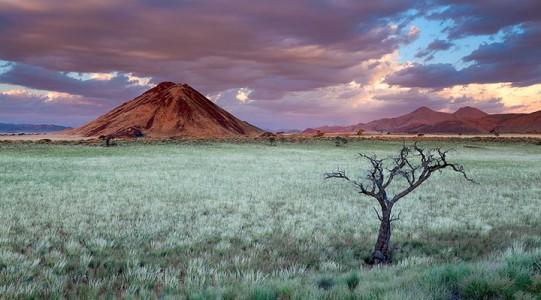 Most Beautiful Photographs To Reveal The Beautiful Namibian Desert-17