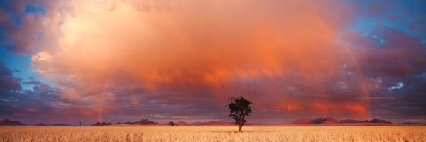 Most Beautiful Photographs To Reveal The Beautiful Namibian Desert-18