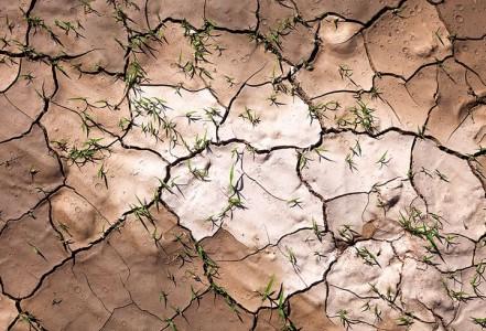 Most Beautiful Photographs To Reveal The Beautiful Namibian Desert-19