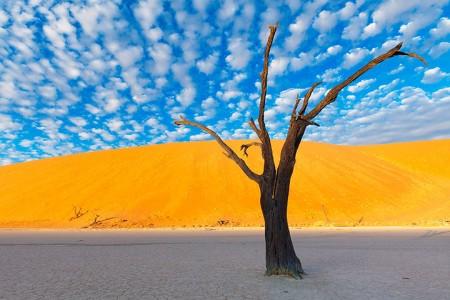 Most Beautiful Photographs To Reveal The Beautiful Namibian Desert-2