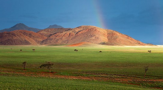 Most Beautiful Photographs To Reveal The Beautiful Namibian Desert-21
